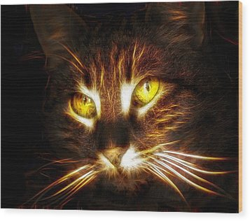 Cat's Eyes - Fractal Wood Print by Lilia D