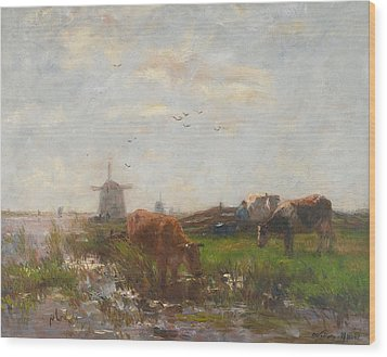 Cattle Grazing Wood Print by Willem Maris