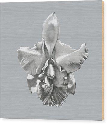 Cattleya I - Sweet Dreams Wood Print by Joan Garcia
