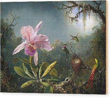 Cattleya Orchid And Three Brazilian Hummingbirds Wood Print by Emile Munier