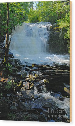Cattyman Falls 2 Wood Print by Larry Ricker
