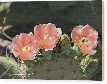 Cactus Plus Friend Wood Print