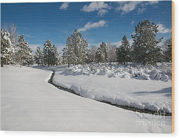 Wood Print featuring the photograph Caughlin Creek Snowfall by Vinnie Oakes