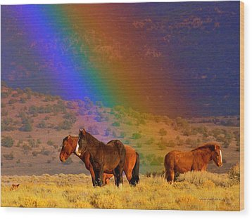 Caught In A Rainbow  Wood Print by Jeanne  Bencich-Nations