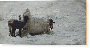 Caught In The Act Wood Print by Kathy Jennings