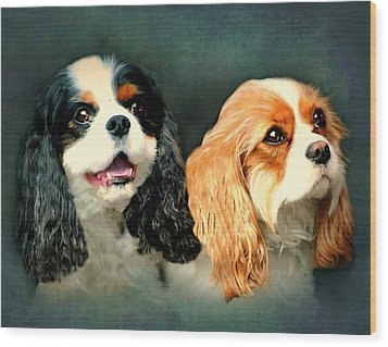 Cavalier King Charles Wood Print by Diana Angstadt