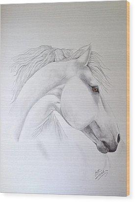 Cavallo Wood Print