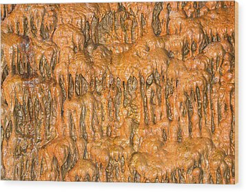 Cave Formation 5 Wood Print by T C Brown
