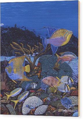 Cayman Reef 1 Re0021 Wood Print by Carey Chen