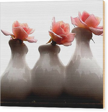 Cecil Brunner Roses  Wood Print by Karen Molenaar Terrell