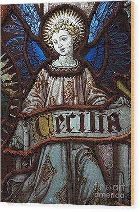 Cecilia Wood Print by Ed Weidman