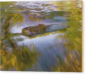Cedar 22 Wood Print