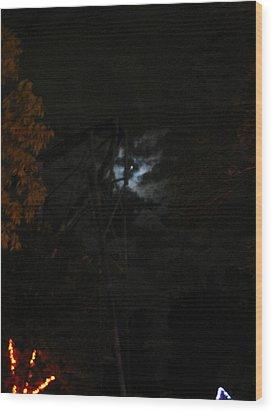 Cedar Point - 12127 Wood Print by DC Photographer