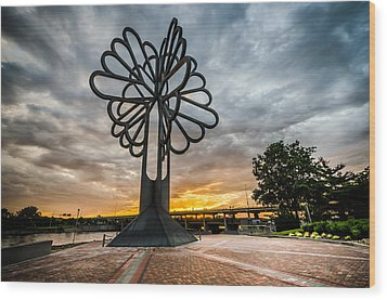 Cedar Rapids Five Seasons Tree At Sunset Wood Print