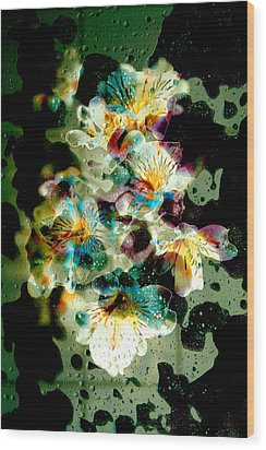 Celestial Flowers Wood Print by Loriental Photography