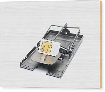 Cellphone Trap Wood Print by Sinisa Botas