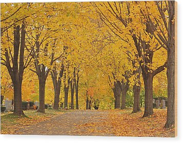 Cemetery In Autumn Wood Print by Gail Maloney