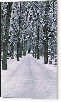 Cemetery In Snow Wood Print by Gail Maloney