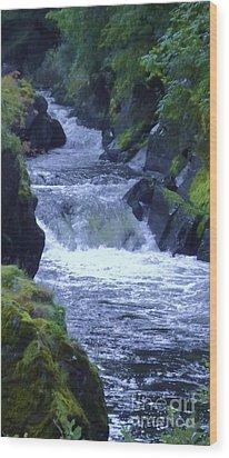 Wood Print featuring the photograph Cenarth Falls by John Williams