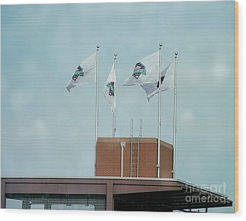 Center Field Flags Wood Print by Terry Weaver