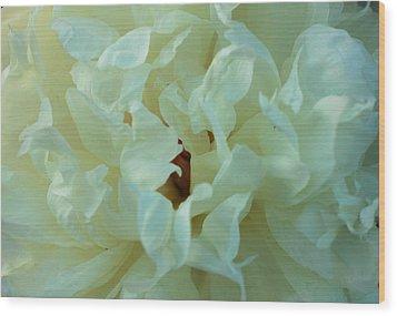 Center Wood Print by Haren Images- Kriss Haren
