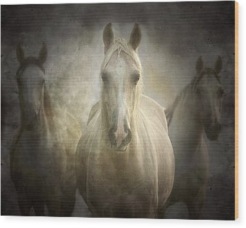 Center Of Attention Wood Print by Ron  McGinnis