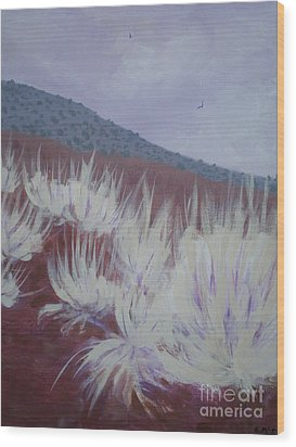 Central Oregon Contrasts Wood Print by Suzanne McKay