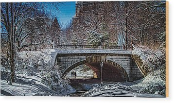 Central Park After Nemo Wood Print by Chris Lord
