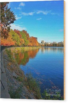 Central Park Autumn Landscape Wood Print