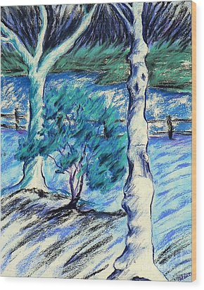 Central Park Blues Wood Print by Elizabeth Fontaine-Barr