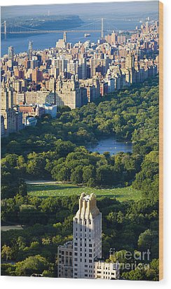 Central Park Wood Print by Brian Jannsen