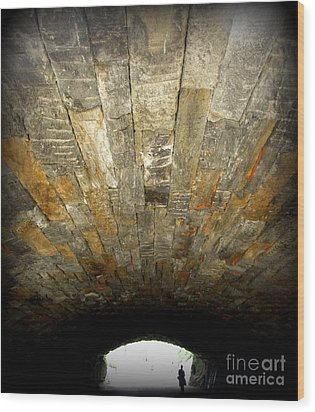 Central Park Bridge Wood Print by Maria Scarfone