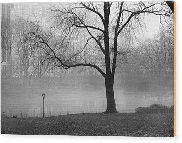 Wood Print featuring the photograph Central Park Fog by Dave Beckerman