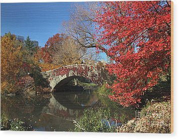 Wood Print featuring the photograph Central Park In The Fall-1 by Steven Spak