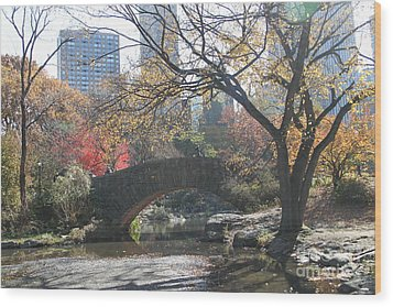 Wood Print featuring the digital art Central Park In The Fall-3 by Steven Spak