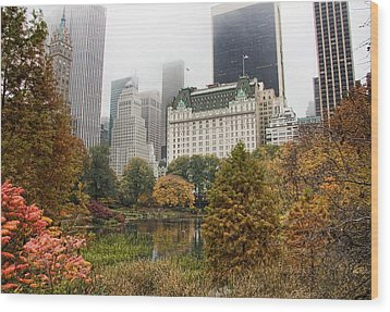 Central Park Wood Print by June Marie Sobrito