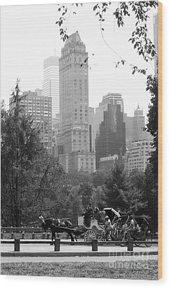 Central Park Wood Print by Kristi Jacobsen