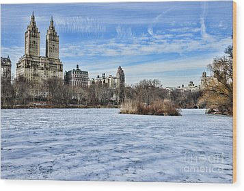 Central Park Lake Looking West Wood Print by Paul Ward
