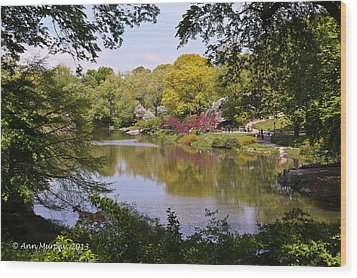 Wood Print featuring the photograph Central Park Landscape by Ann Murphy