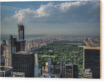 Wood Print featuring the photograph Central Park New York City by Chris McKenna