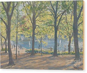 Central Park New York Wood Print by Julian Barrow