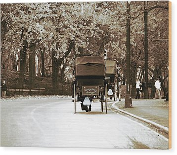 Central Park Ride Wood Print by John Rizzuto