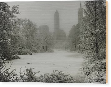 Wood Print featuring the photograph Central Park Snowstorm by Chris Lord