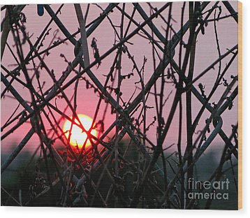 Wood Print featuring the photograph Chain Link Sunset by Jennie Breeze