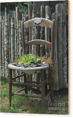 Chair Planter Wood Print by Ron Roberts