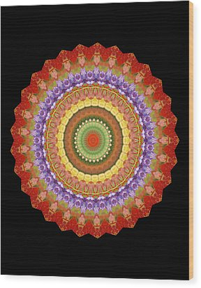 Chakra Spin Wood Print by Barbie Wagner
