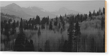 Wood Print featuring the photograph Chama Trees by Atom Crawford
