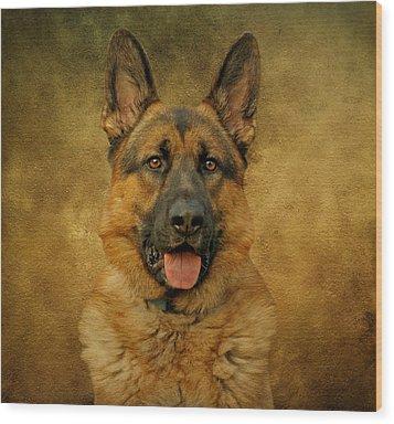 Chance - German Shepherd Wood Print by Sandy Keeton
