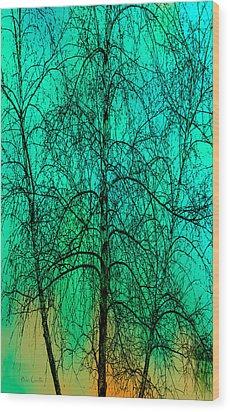 Change Of Seasons Wood Print by Bob Orsillo