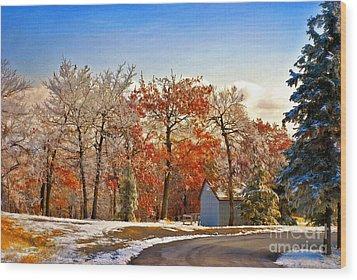 Change Of Seasons Wood Print by Lois Bryan